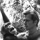 """""""Tarzan"""" Ron Ely with his chimp Cheetah"""