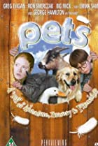 Pets (2002) Poster