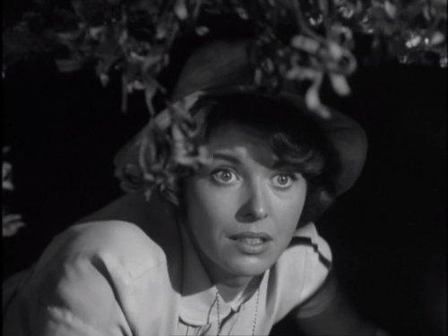 Eileen Moore in Danger Man (1960)