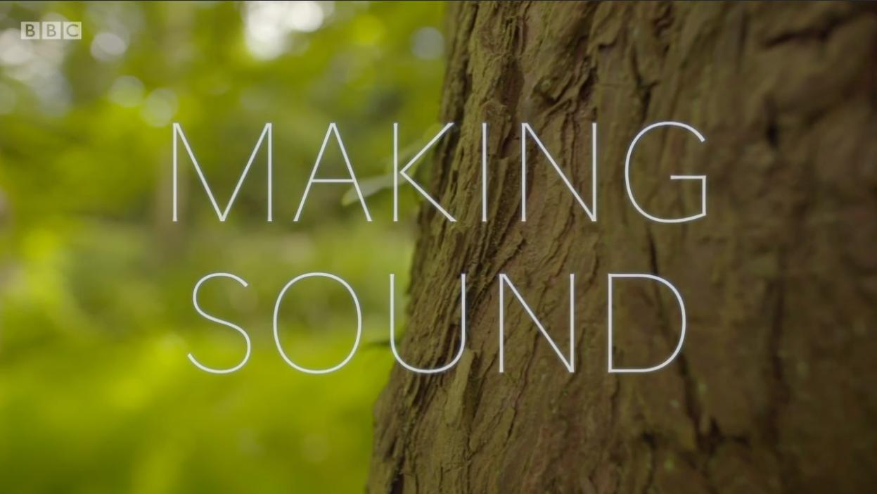 Sound Waves: The Symphony of Physics (2017)