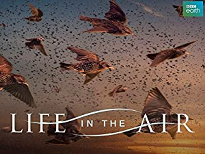 Where to stream Life in the Air