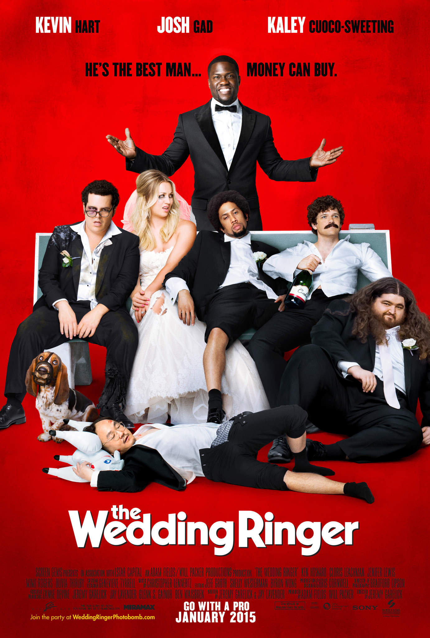 f21696f27 The Wedding Ringer (2015) - IMDb