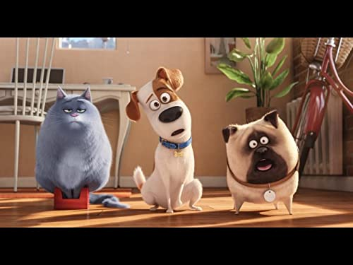 'The Secret Life of Pets' Cast Ponder Their Spirit Animals