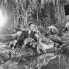 Olivia de Havilland and Dick Powell in A Midsummer Night's Dream (1935)