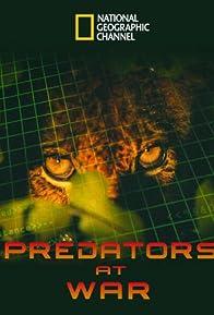 Primary photo for Predators at War