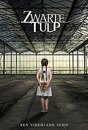 Zwarte tulp Poster