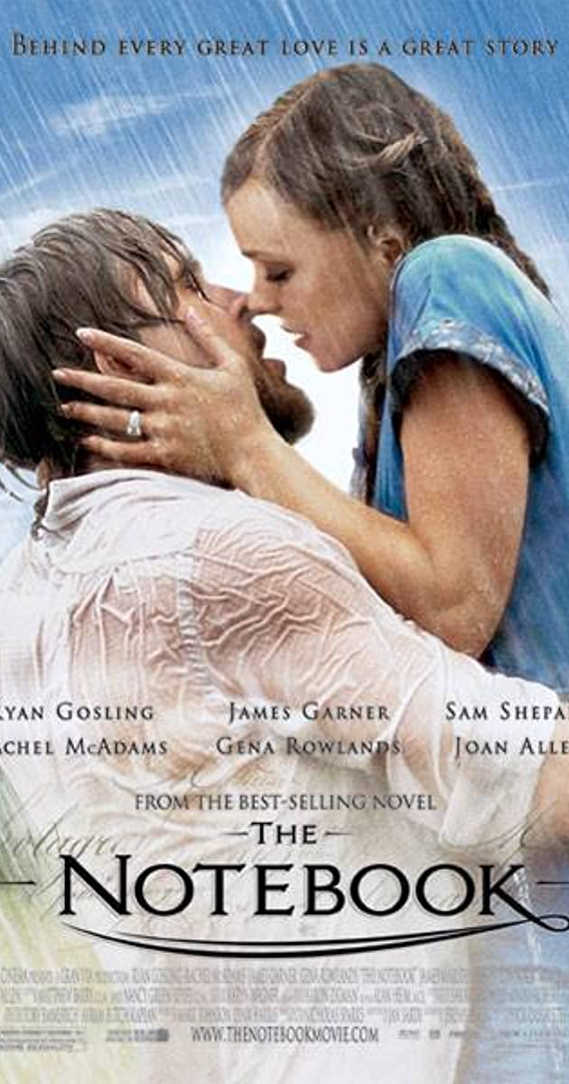 Image result for the notebook summary""
