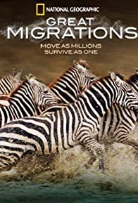 Primary photo for Great Migrations