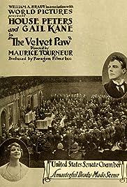 The Velvet Paw Poster
