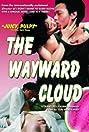 The Wayward Cloud (2005) Poster
