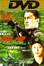 Fei hu Poster