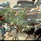 Billy Crystal in City Slickers (1991)