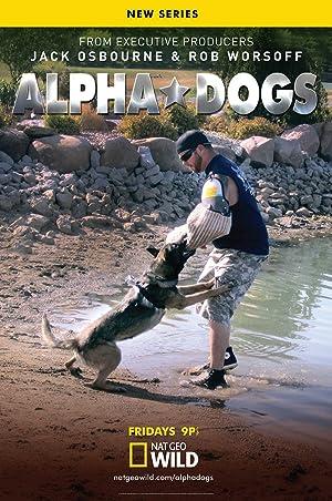 Where to stream Alpha Dogs