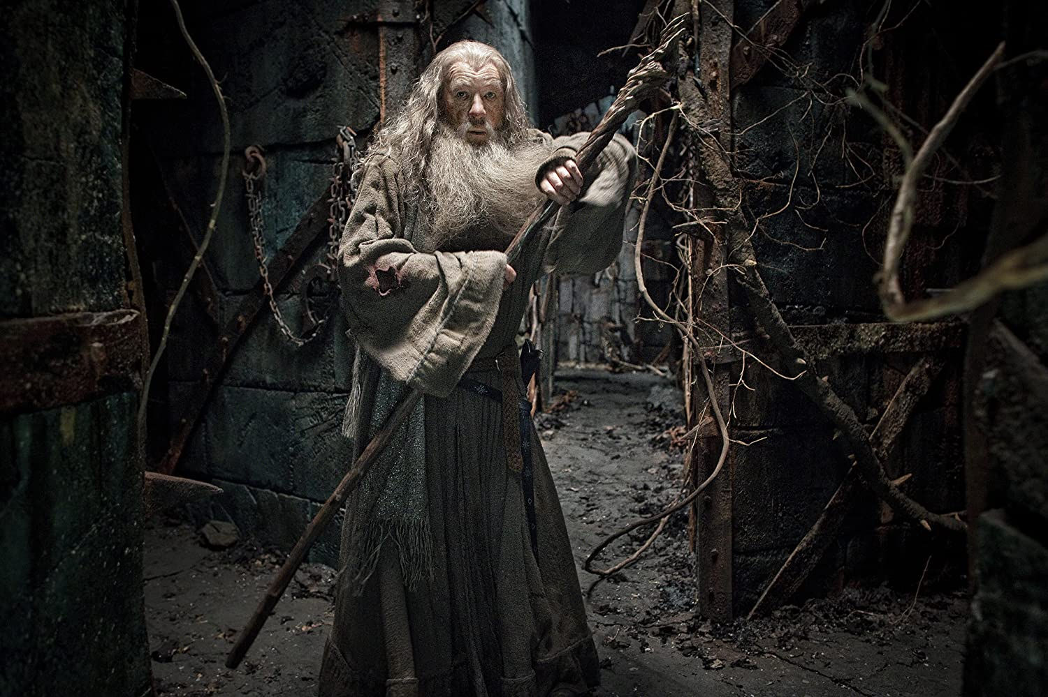 Ian McKellen in The Hobbit: The Desolation of Smaug (2013)