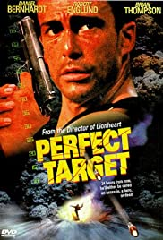 Perfect Target Poster