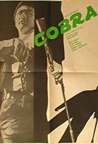 Primary photo for Cobra