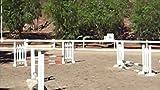 Equestrian reel
