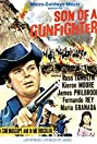 Son of a Gunfighter (1965) Poster