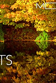Moving Art: Forests (2014) Poster - Movie Forum, Cast, Reviews