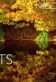 Moving Art: Forests(2014) Poster - Movie Forum, Cast, Reviews