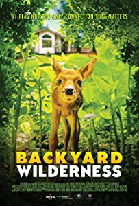 Movie trailer downloads mp4 Backyard Wilderness [480i]