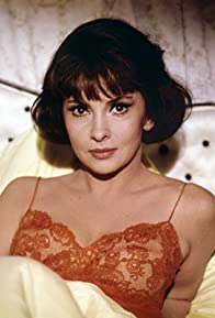 Primary photo for Gina Lollobrigida