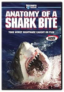 shark english movie