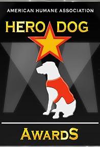 Primary photo for 2011 Hero Dog Awards