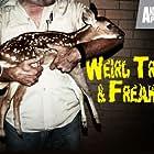 Weird, True & Freaky (2008)