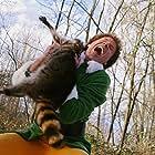 Will Ferrell in Elf (2003)
