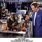 Tim Allen in The Shaggy Dog (2006)