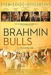 Primary photo for Brahmin Bulls