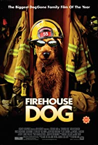 Primary photo for Firehouse Dog