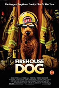 Firehouse Dog movie free download in hindi