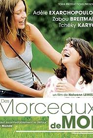 Des morceaux de moi (2013) Poster - Movie Forum, Cast, Reviews