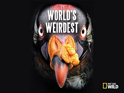 Site to watch full movie for free World's Weirdest USA [Quad]