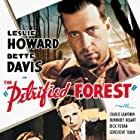 Humphrey Bogart, Bette Davis, and Leslie Howard in The Petrified Forest (1936)