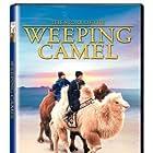 Die Geschichte vom weinenden Kamel (2003)