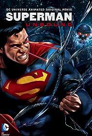 Superman: Unbound (2013)