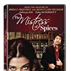 Dylan McDermott and Aishwarya Rai Bachchan in The Mistress of Spices (2005)