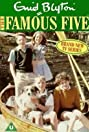 The Famous Five (1995) Poster