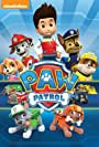 'Paw Patrol' Studio Spin Master Entertainment Promotes Jennifer Dodge to President