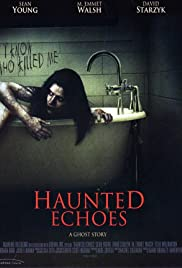 Haunted Echoes Poster