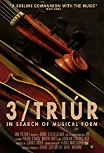 3-Triur: In Search of Musical Form