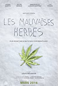 Primary photo for Les mauvaises herbes
