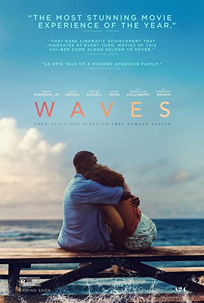 Poster of Waves 2019 Full English Free Download Watch Online In HD Movie Download 480p HDRip