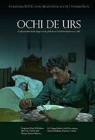Primary photo for Ochi de urs