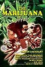 The Marijuana Affair