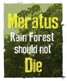 Meratus Rain Forest Should Not Die