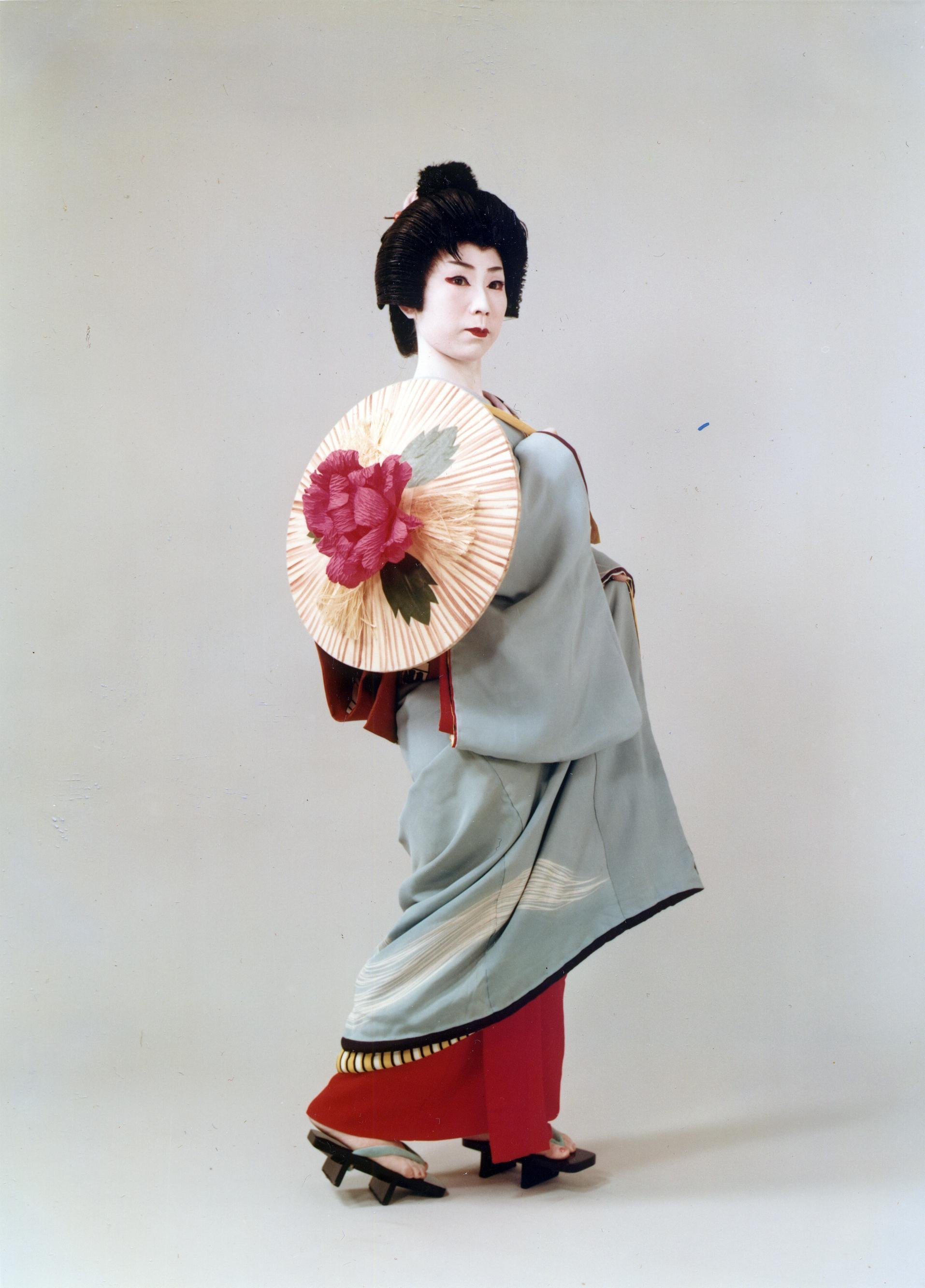 Think, that the life of geishas apologise, but